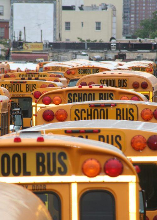 school-bus-600270_1920